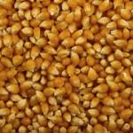 Dr. Popcorn investor activity on CLF