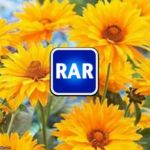 RAR is rich investor activity on PSA
